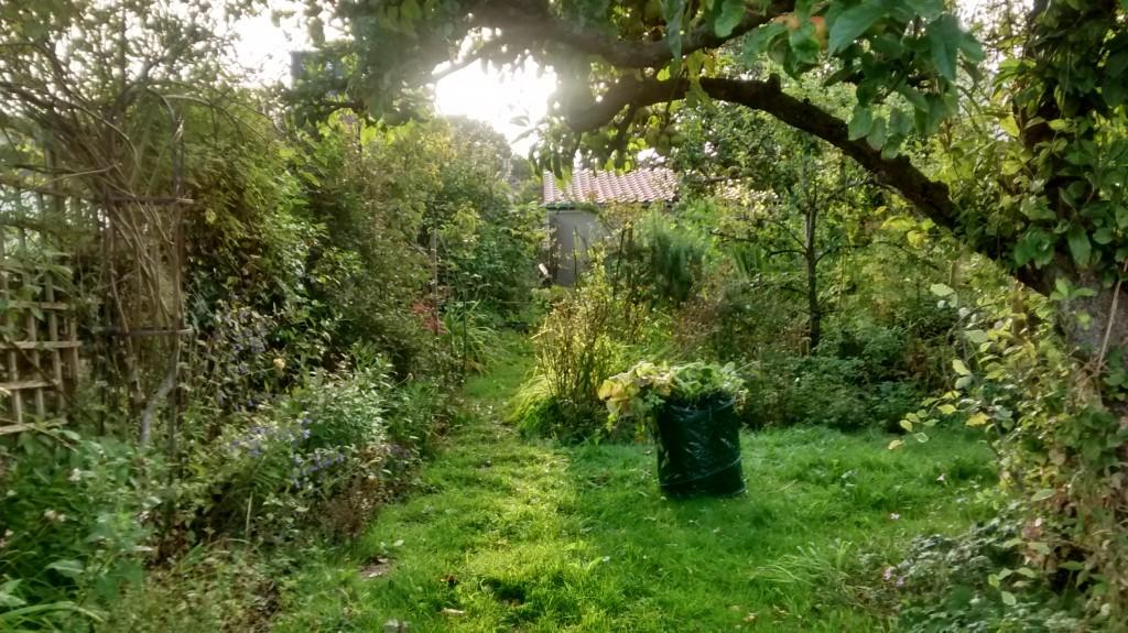 Bramble kitchen garden